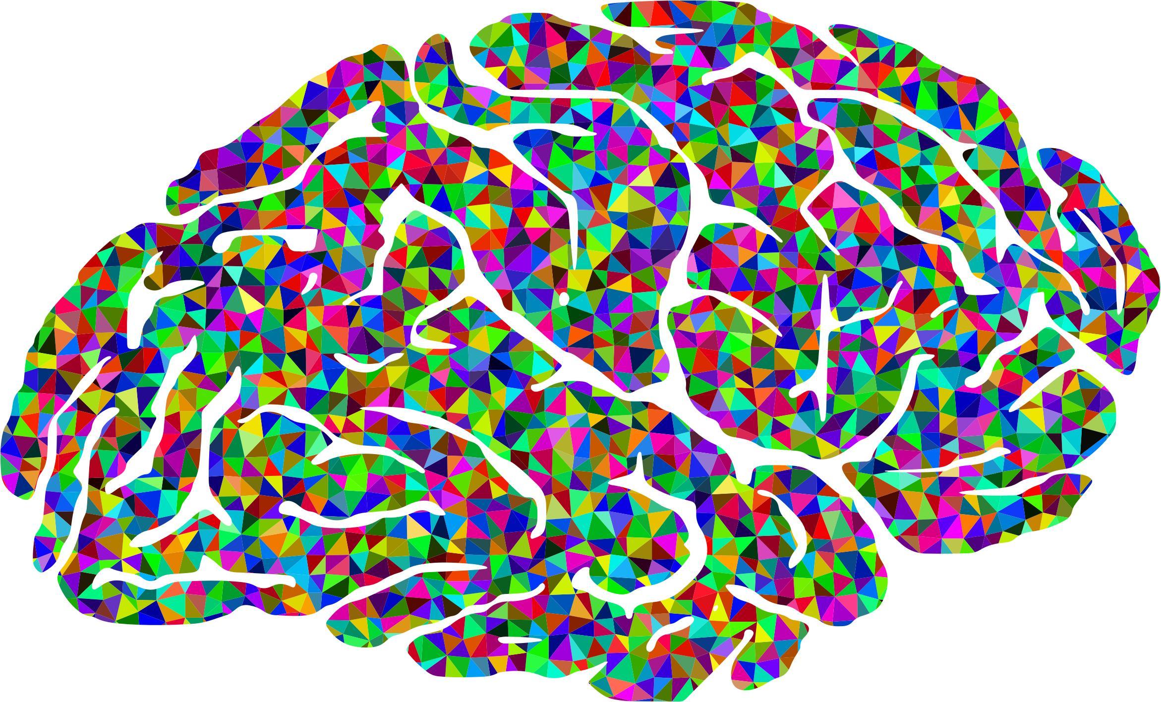 2342x1416 Free Brain Icons Png, Bra N Images