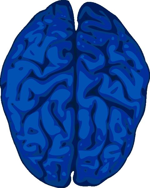 480x601 Blue Brain Clip Art
