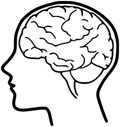 243x256 Brain Icon