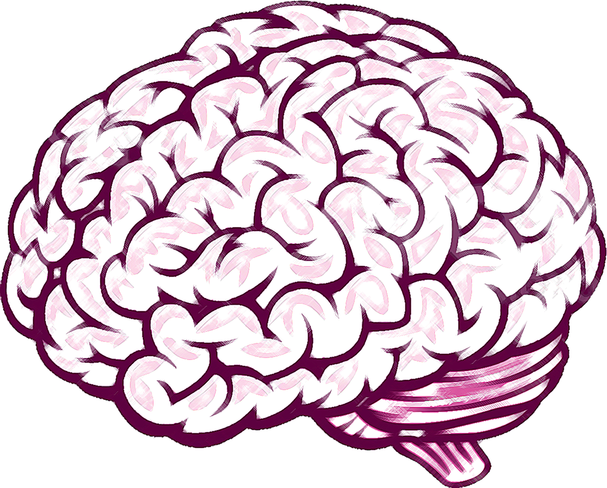 1210x972 Thinking Brain Clipart For Kids Png