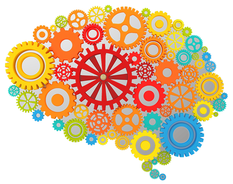 800x632 Brain Gears Icon Png