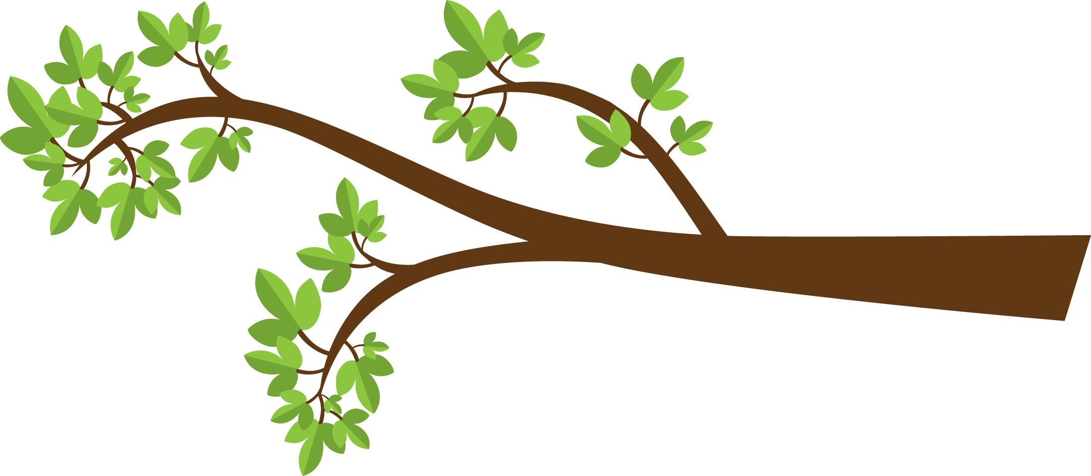 2160x943 Green Branch Cliparts