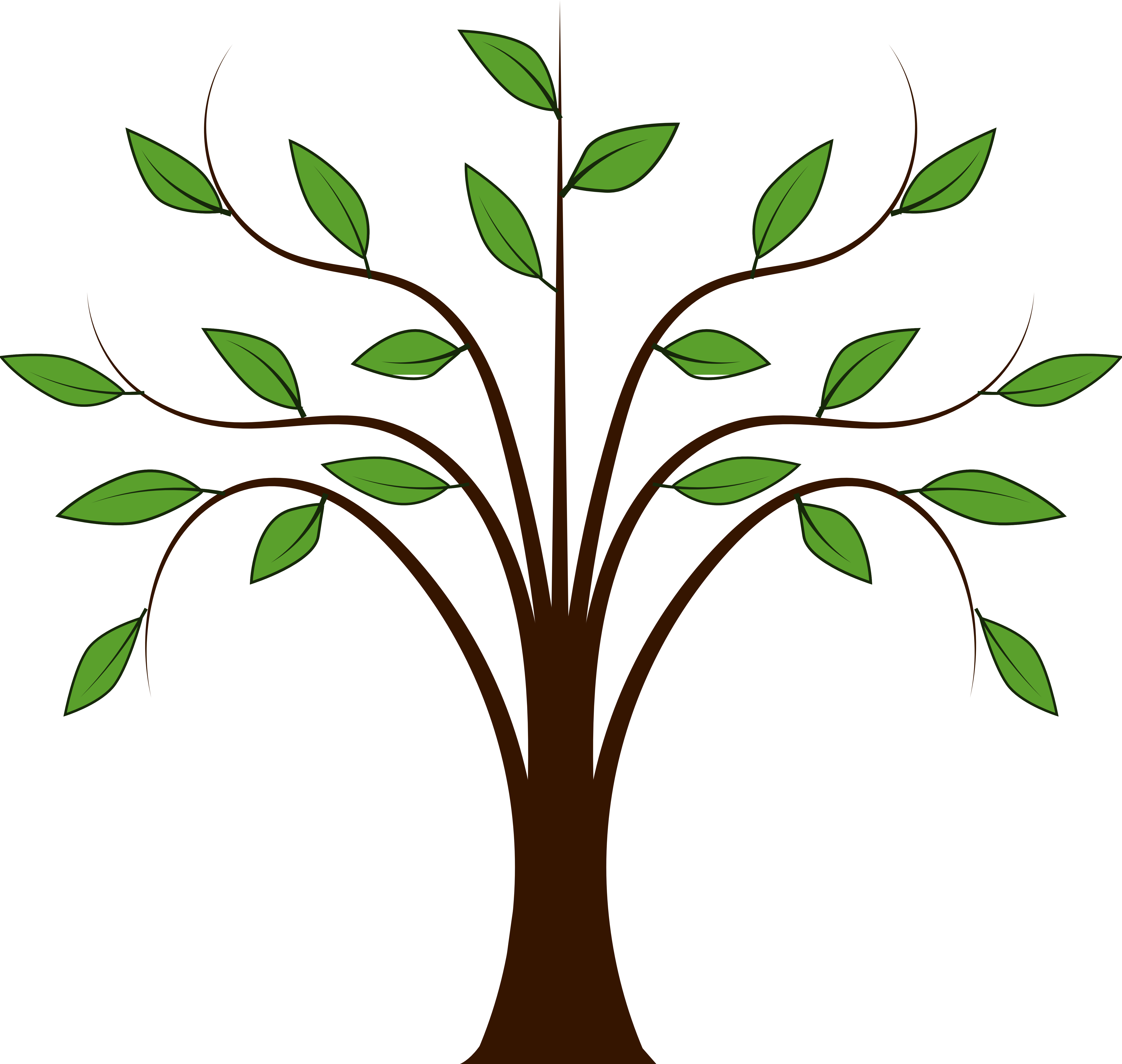 5555x5270 Branch Clipart Tree Root