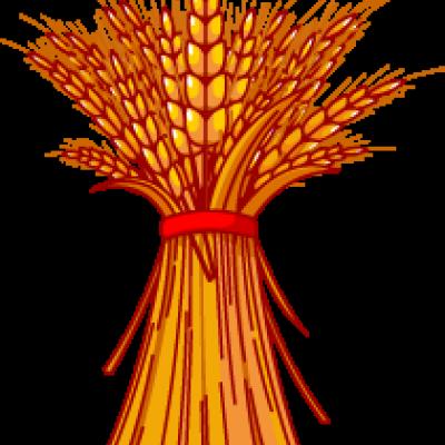 400x400 Grain Clipart