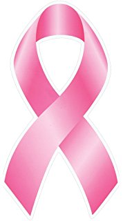 178x320 Breast Cancer Awareness Pink Ribbon Car Magnets (12