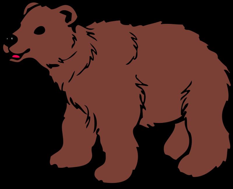 800x649 Brown Bear Clipart Cute