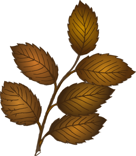 522x598 Fall Leaves Branch Clip Art