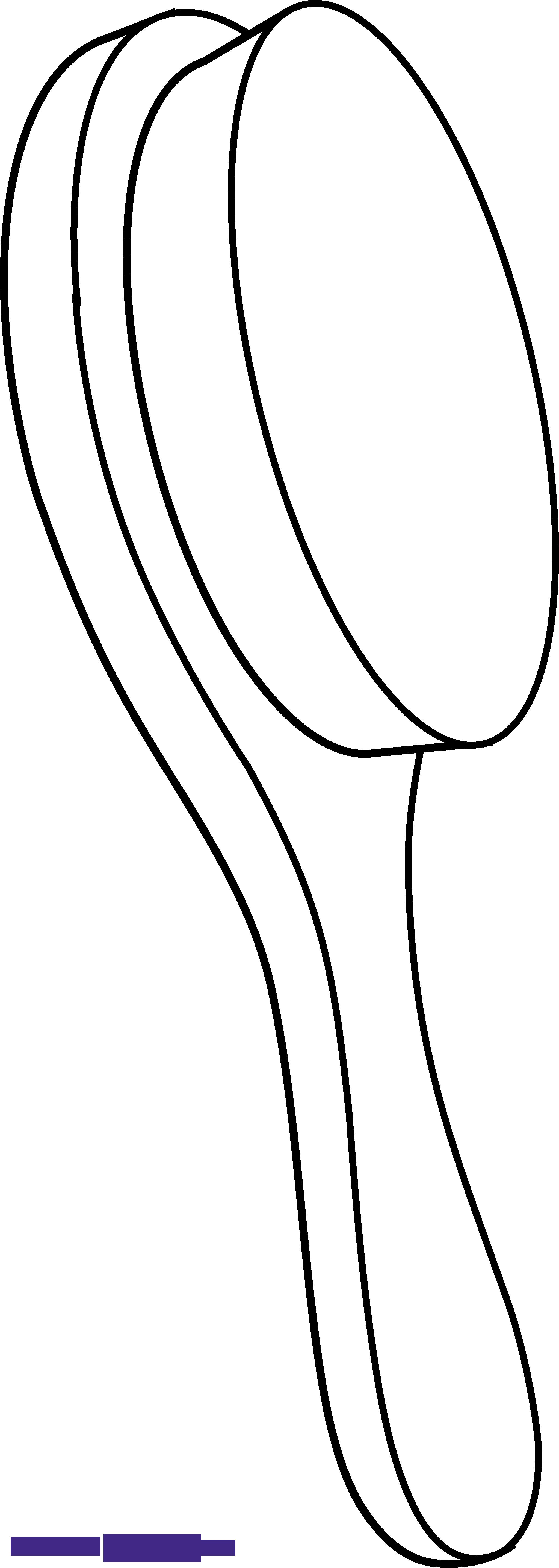 2047x5737 Hair Brush Outline Clipart