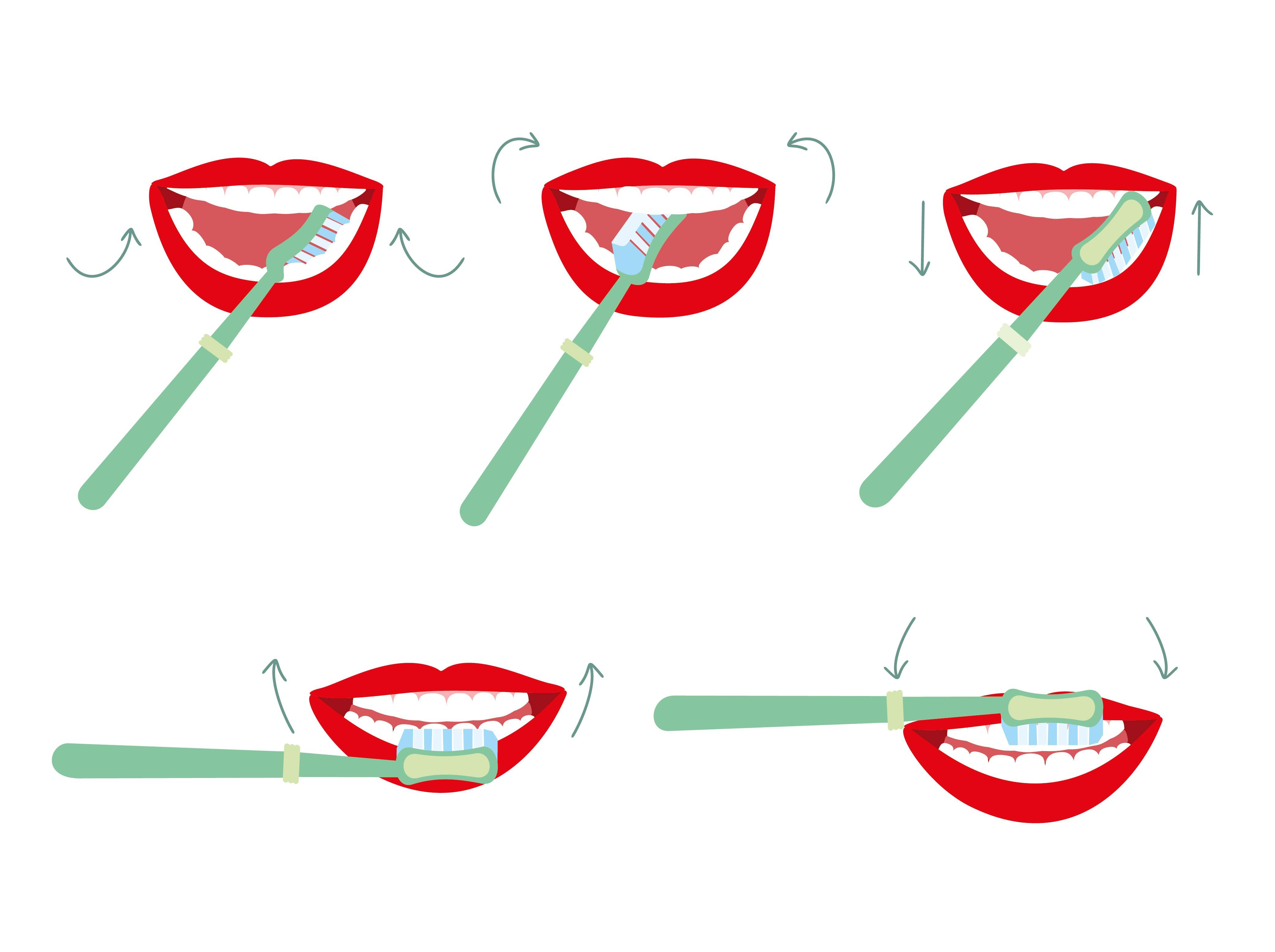 Brush Your Teeth Pictures