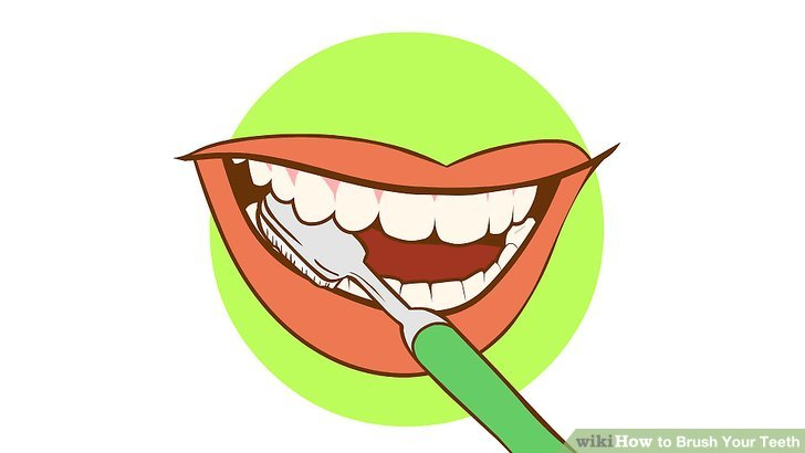 728x410 Brush Teeth Vector And Brush Your Teeth Clipart 5 Favorite 2