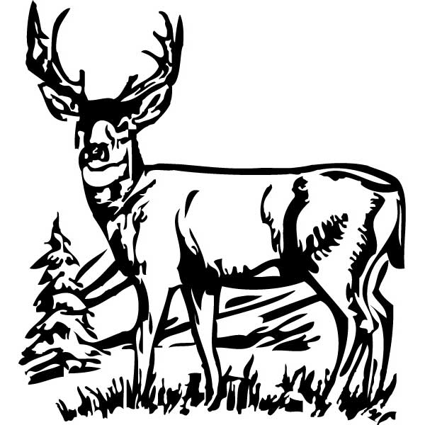 600x600 Deer Clipart Black And White