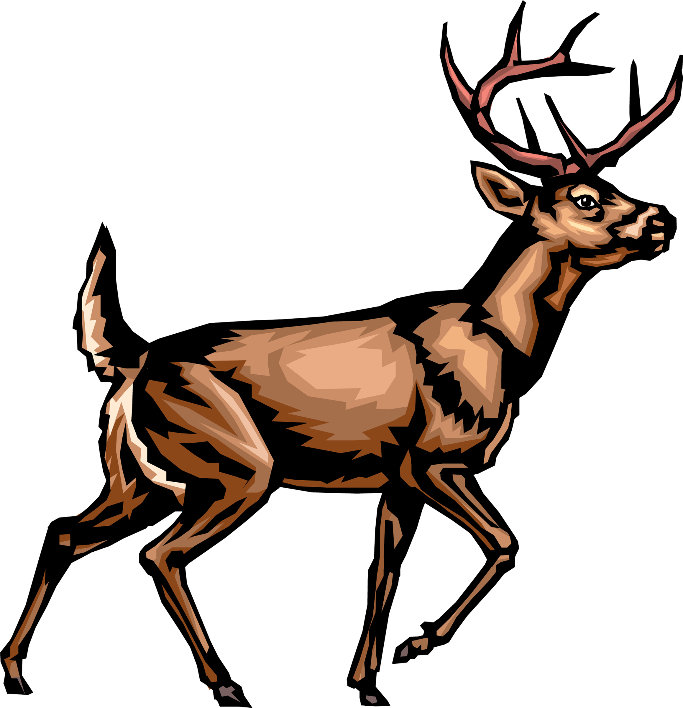 deer buck clipart clipartmag