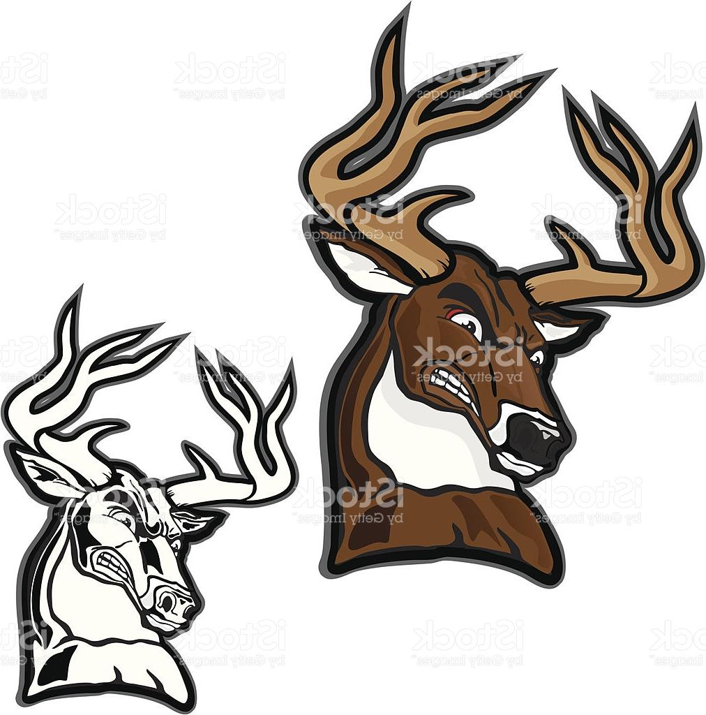 1012x1024 Best Hd Deer Clipart Big Buck Images