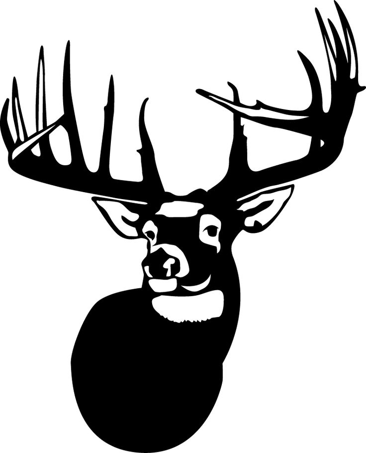 736x910 Buck Clipart Vector