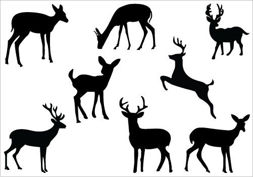 501x351 Buck And Doe Clip Art Deer Silhouette Clip Art Packcategory