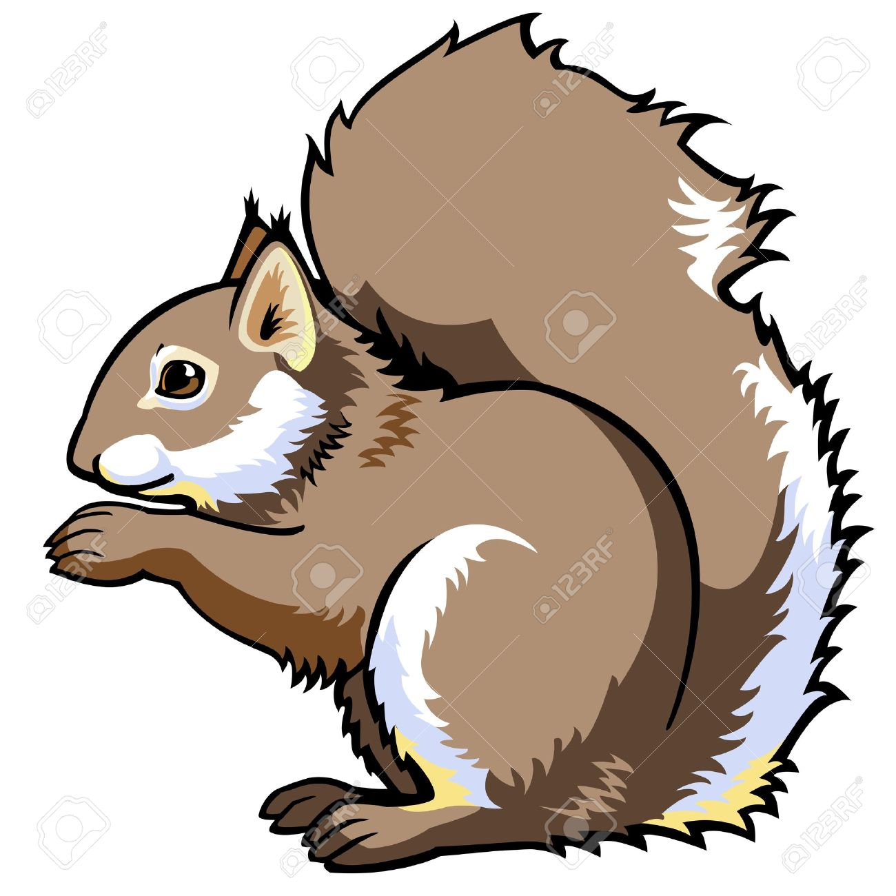 1300x1300 Top 87 Squirrel Clip Art