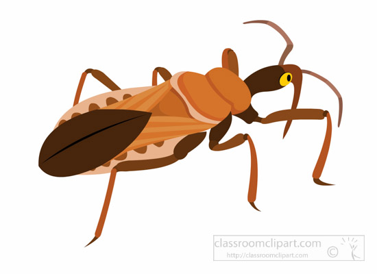 550x400 Insect Clipart Clipart Assassin Bug Insect Clipart