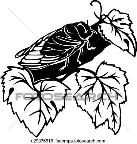 447x470 Clip Art Of , Bugs, Cicada, Insect, U29376516