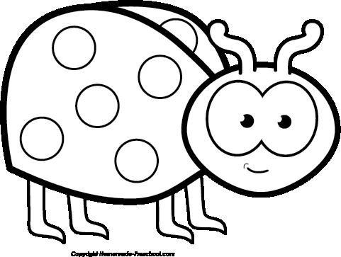 481x363 Ladybug Clipart Black And White