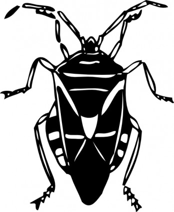 349x425 Insect Clipart Black And White 886 Fly Bug Insect Clip