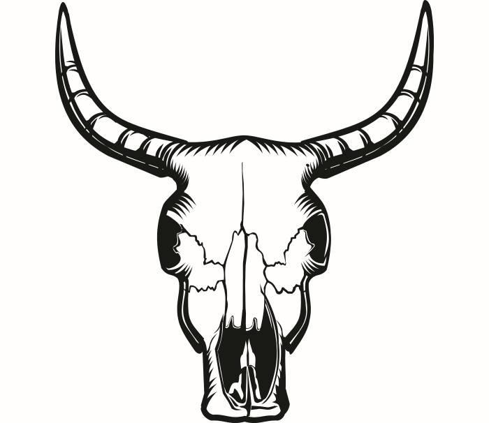 700x606 Bull Skull 2 Skeleton Bones Horns Cowboy Country Western Cow