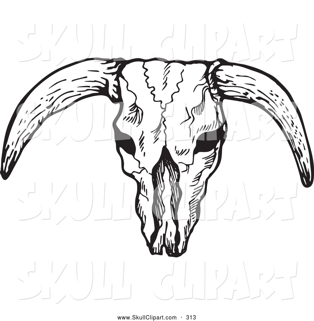 1024x1044 Vector Clip Art Of A Black And White Bleached Bull Skull