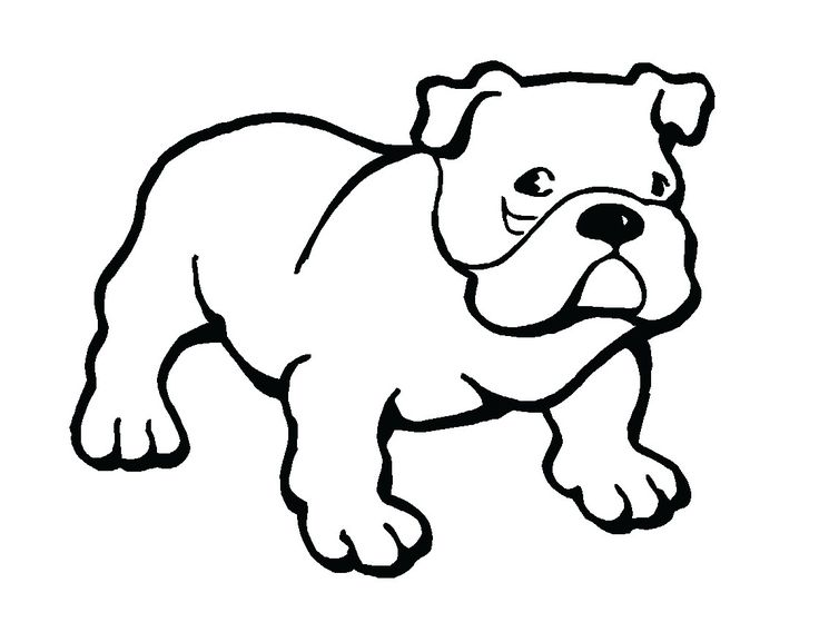 736x568 Bulldog Clipart Big Dog