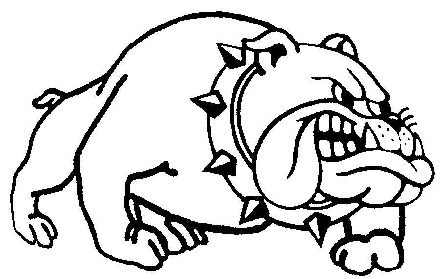 907x571 Bulldog Clipart Mad