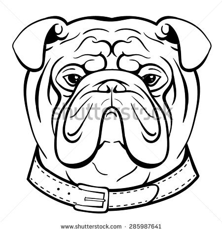 450x470 Coloring Pages Fancy Bulldog Face Drawing Clip Art Dromggb Top