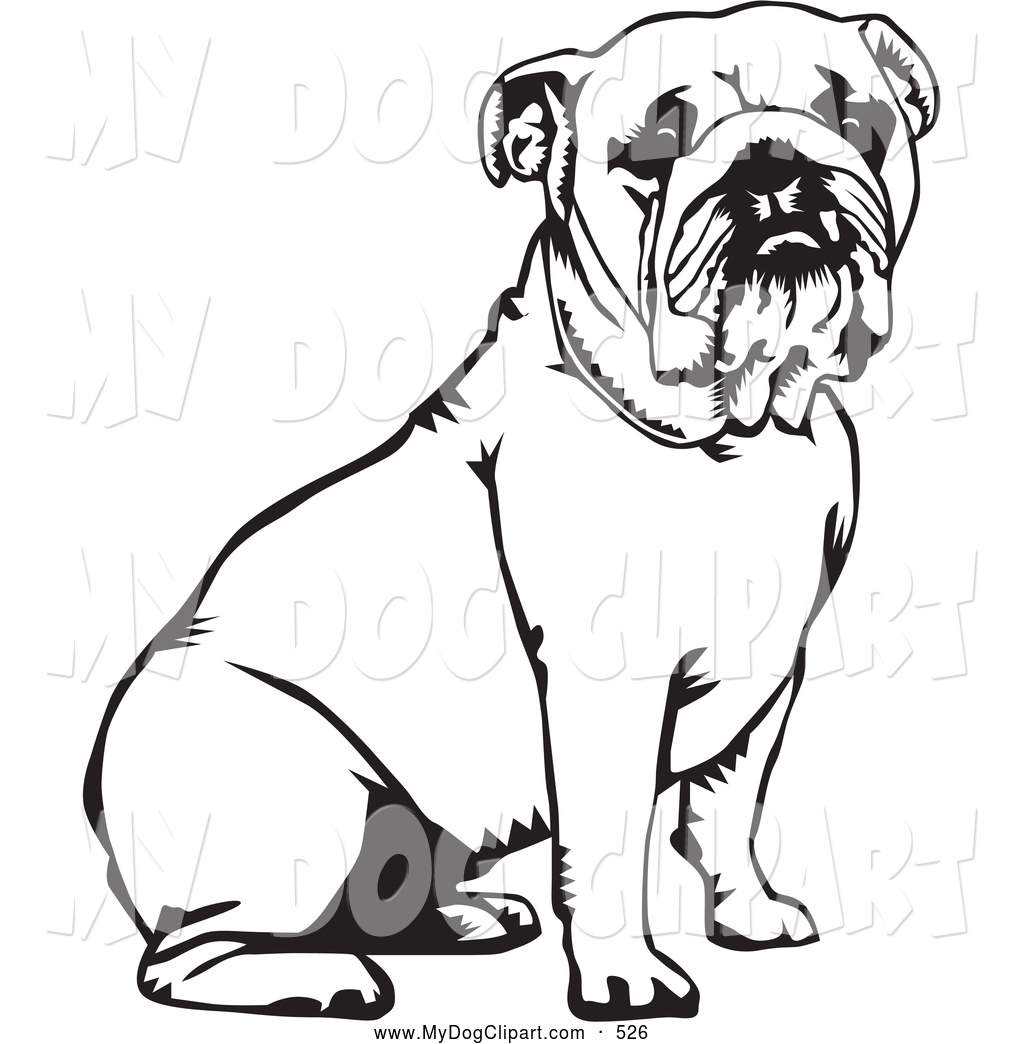 1024x1044 English Bulldog Clipart Black And White