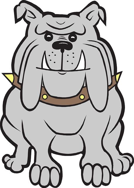 458x640 Bulldog Free To Use Clip Art