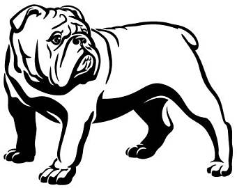 340x270 Bulldog Clipart Outline