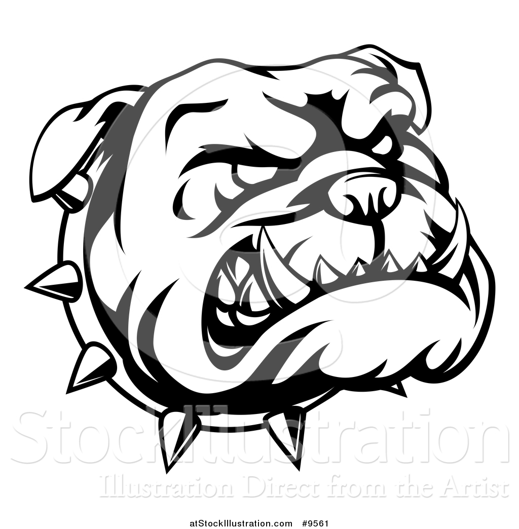 1024x1044 Vector Illustration Of A Lineart Angry Bulldog Face And Spiked