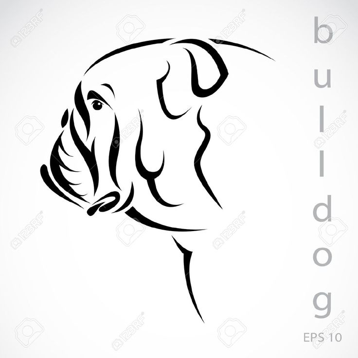 Bulldog Face Outline Free Download Best Bulldog Face Outline On