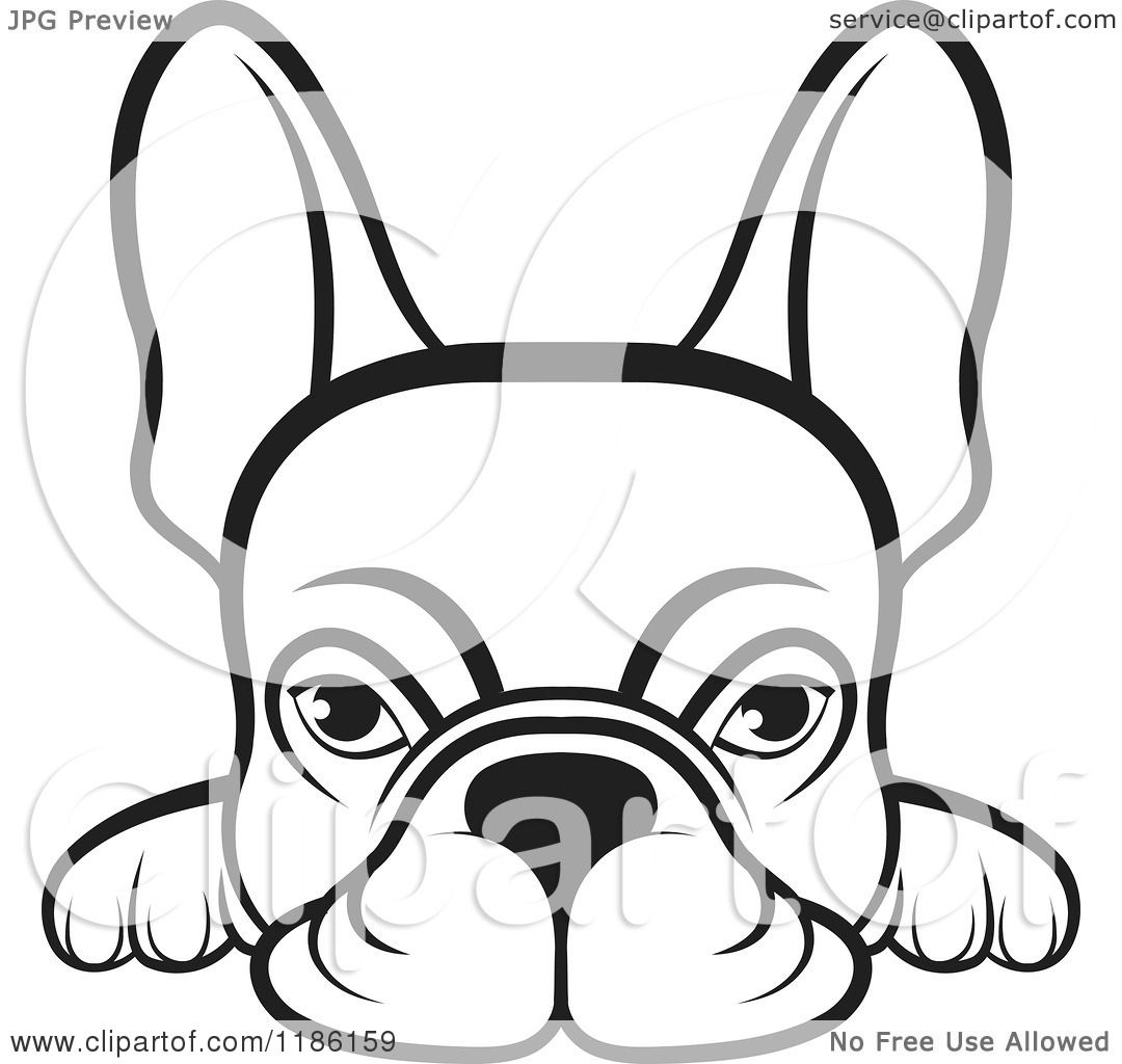 1080x1024 French Bulldog Face Outline