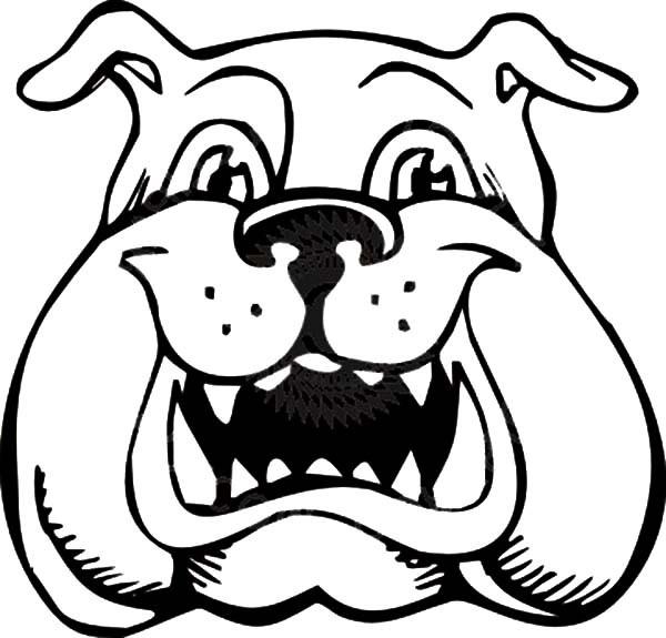 600x575 Bulldog Clipart Coloring Page