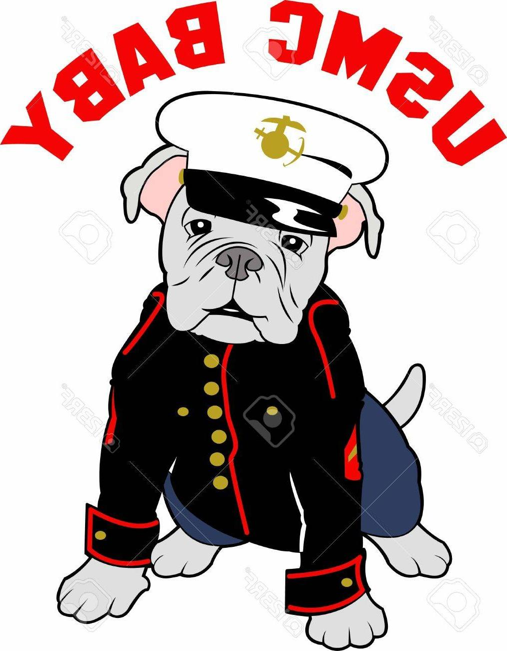 1013x1300 Top 10 Marines Can Show Their Pride With Bulldog Mascot Stock