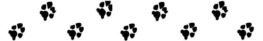 925x144 Small Paw Print Clip Art