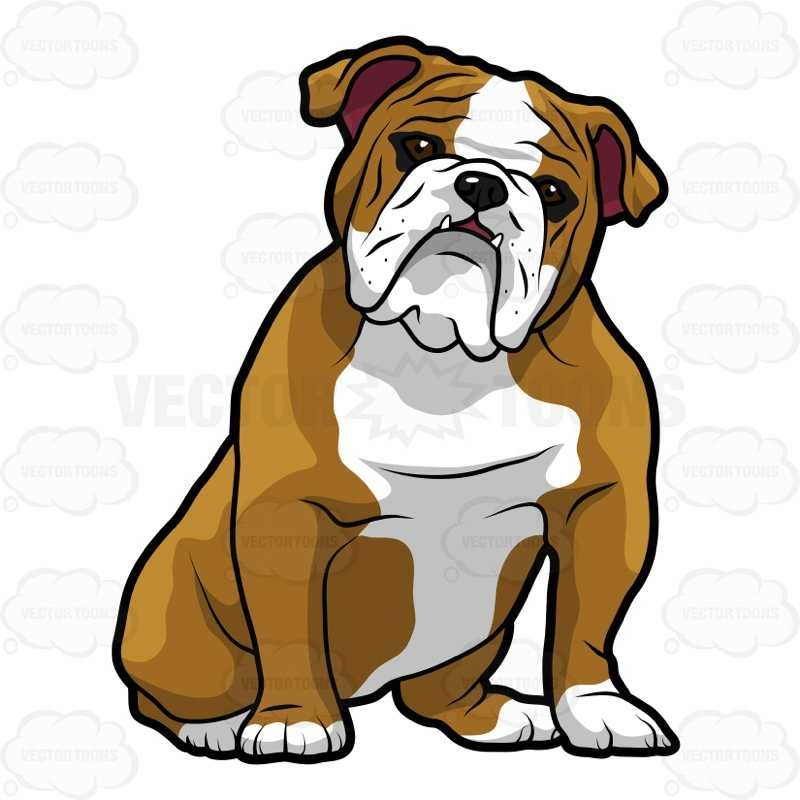 Bulldogs Cartoon Images | Free download best Bulldogs ...