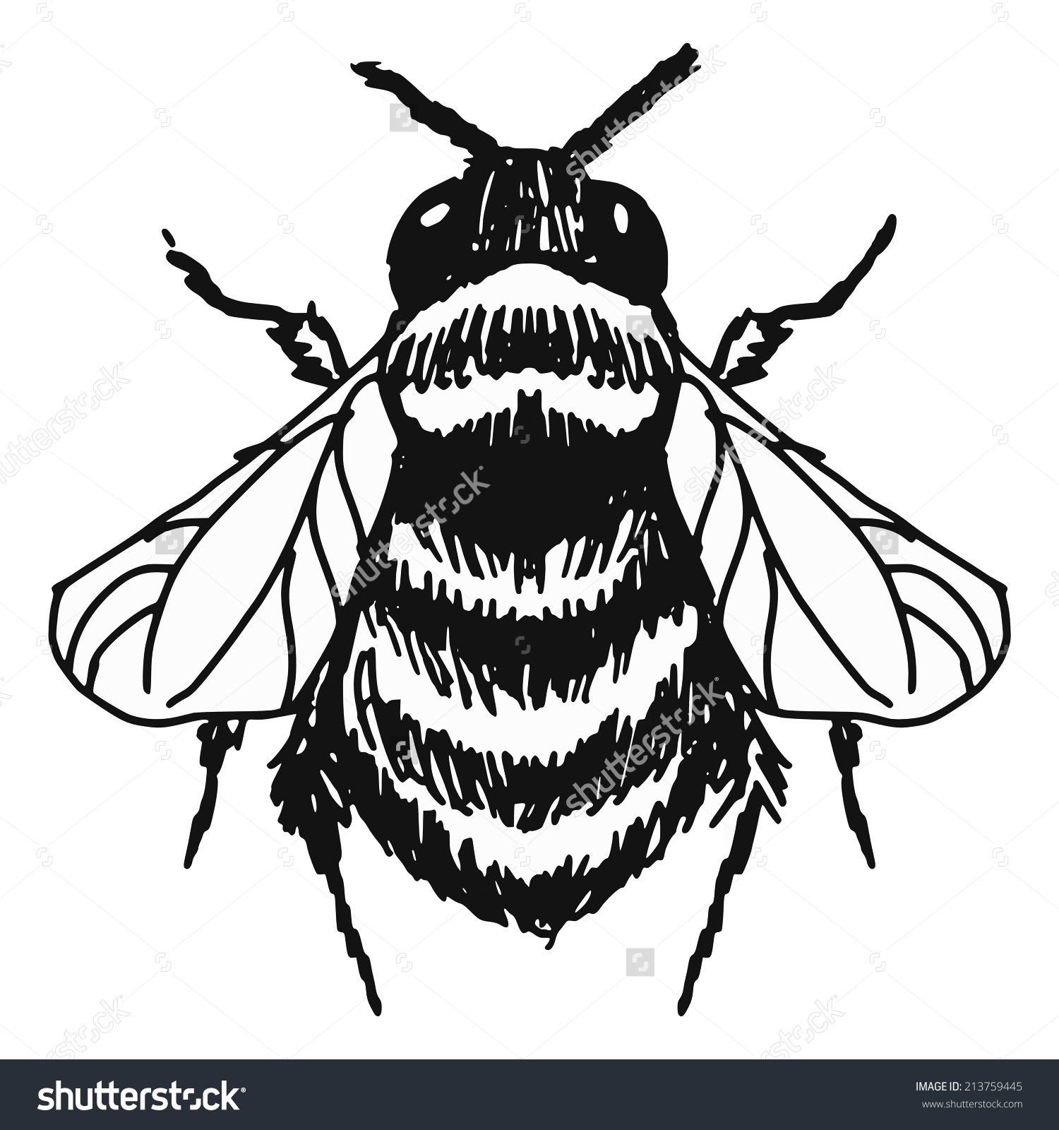 1500x1600 Drawn Bee Outline