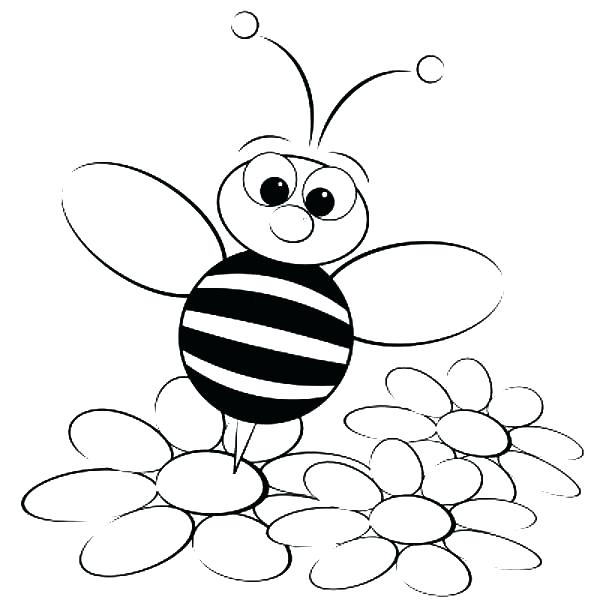 600x600 Fantastic Stunning Bumble Bee Outline New Picture Coloring Page