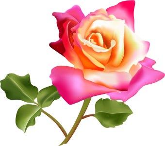 340x300 Flower Bouquet Beautiful Rose Bouquet Clip Art Collection Flowers