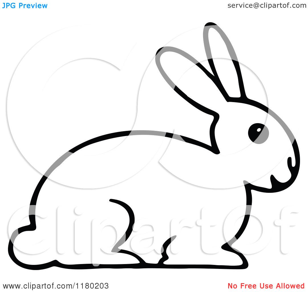 1080x1024 Rabbit Clip Art Black And White Clipart Panda