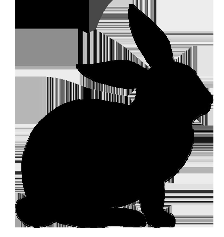 869x917 Shadows Clipart Bunny