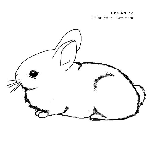 Bunny Coloring Pages | Free download best Bunny Coloring Pages on ...