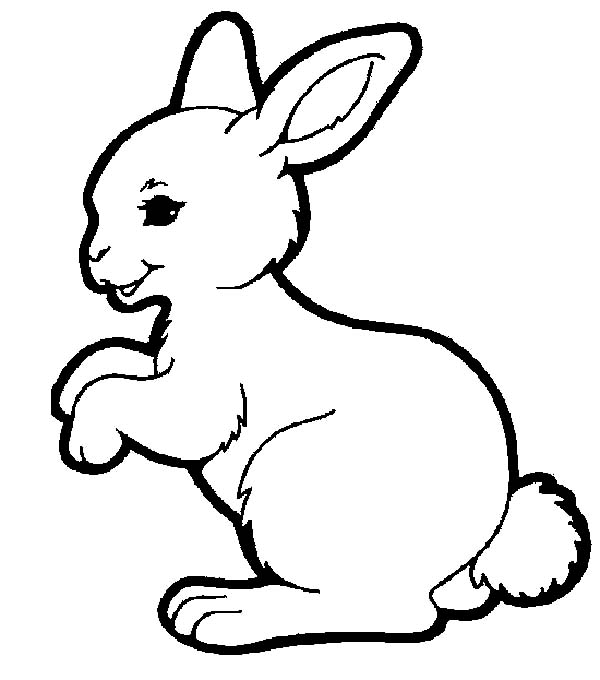 600x680 Drawn Rabbit Coloring Page