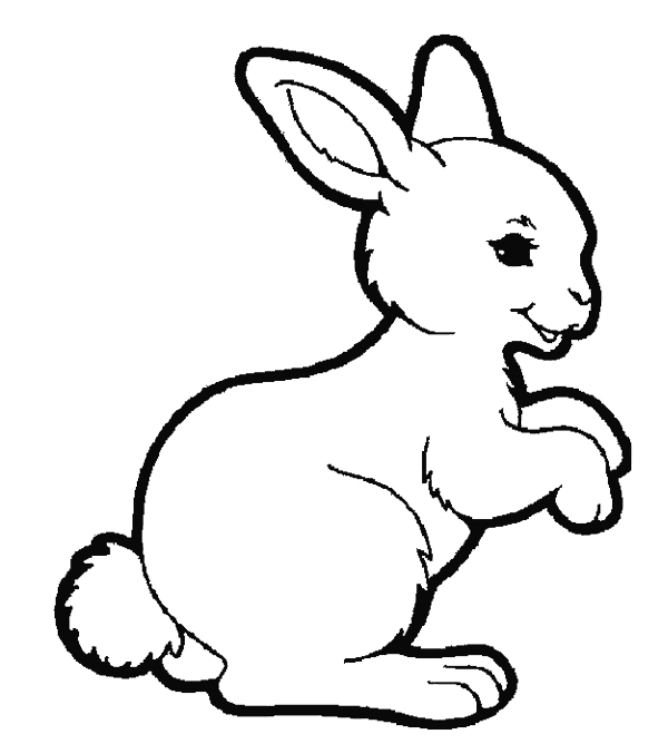600x668 Rabbits Colouring Pages