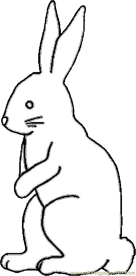 445x900 Bunny Chocolate 2 Coloring Page
