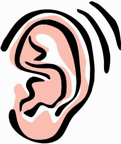 482x574 Clipart Ear