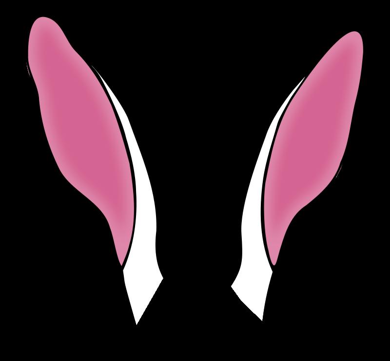 800x740 Kangaroo Ears Clipart